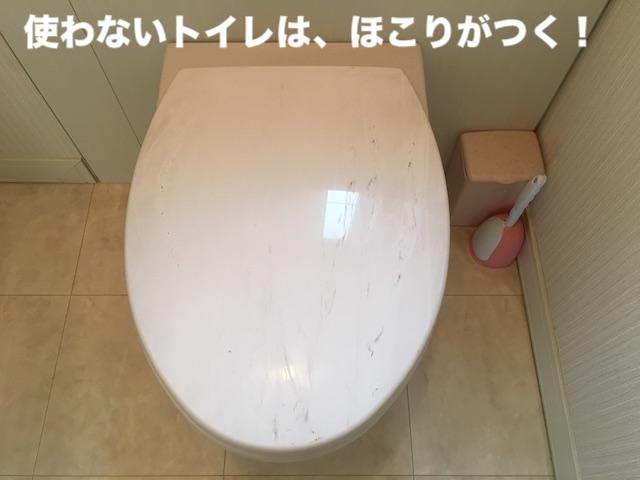 使わないトイレはほこりが付く