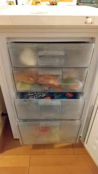 冷凍庫にものを入れた状態