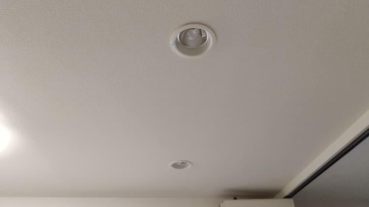 スイッチ・オフ状態の調光式ダウンライト